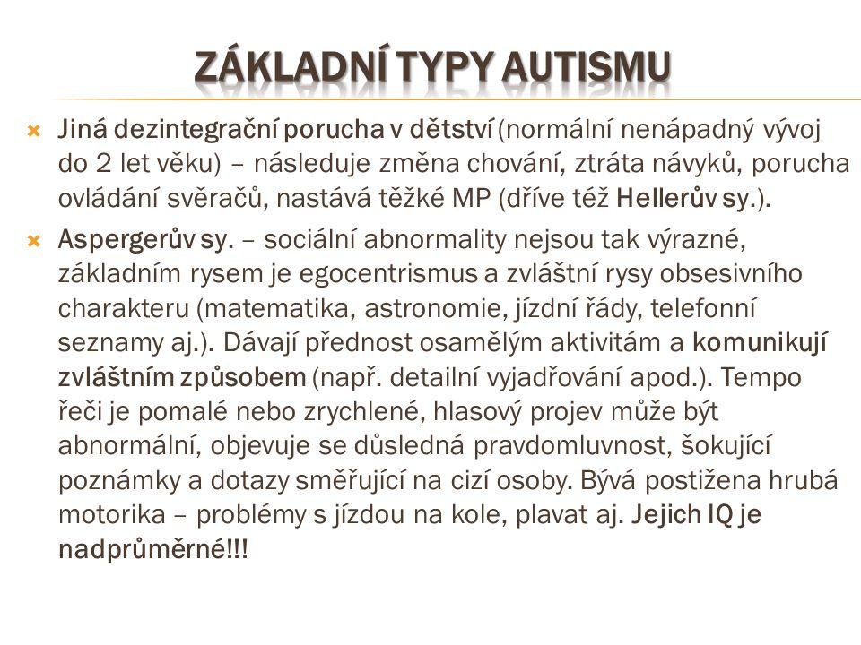 Základní typy autismu