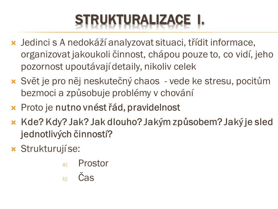 Strukturalizace I.