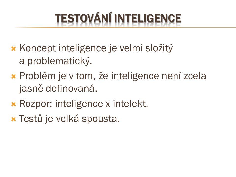 Testování inteligence