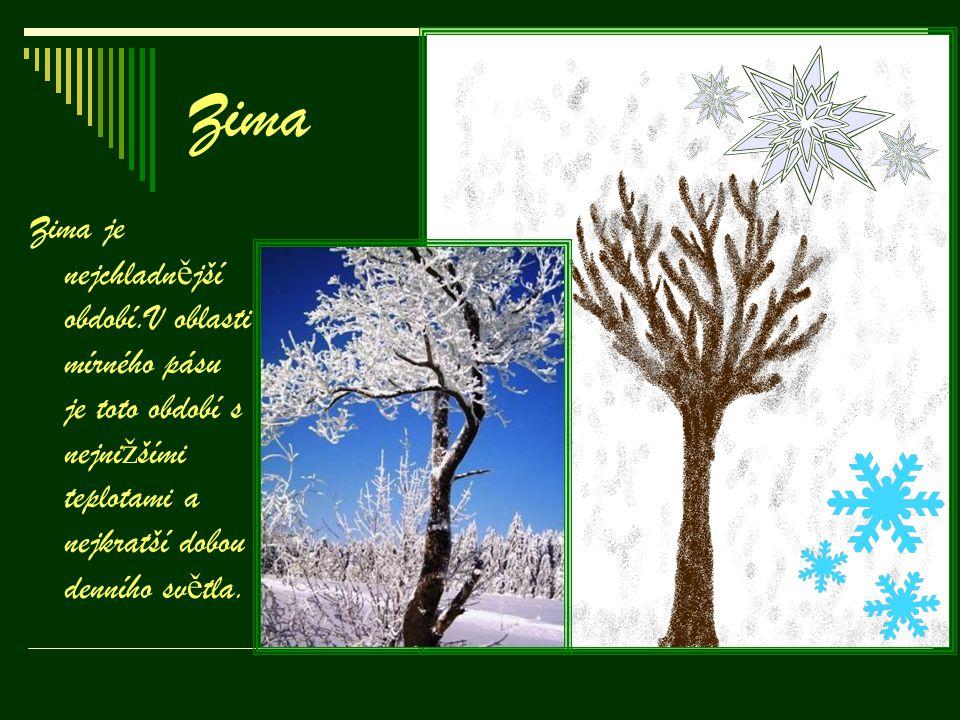 Zima Zima je nejchladnější období.V oblasti mírného pásu je toto období s nejnižšími teplotami a nejkratší dobou denního světla.