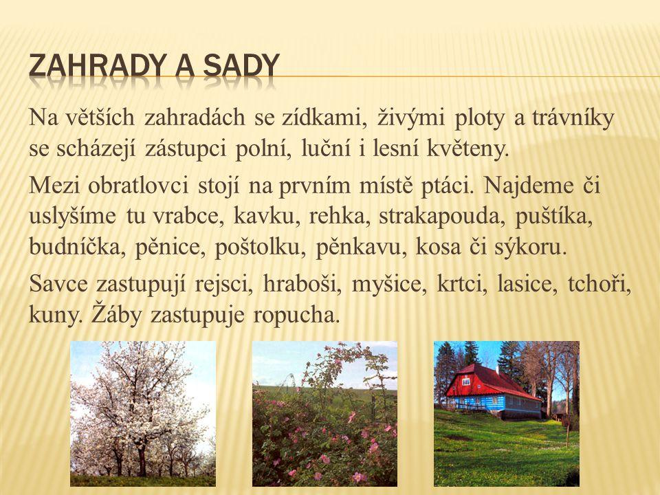 Zahrady a sady