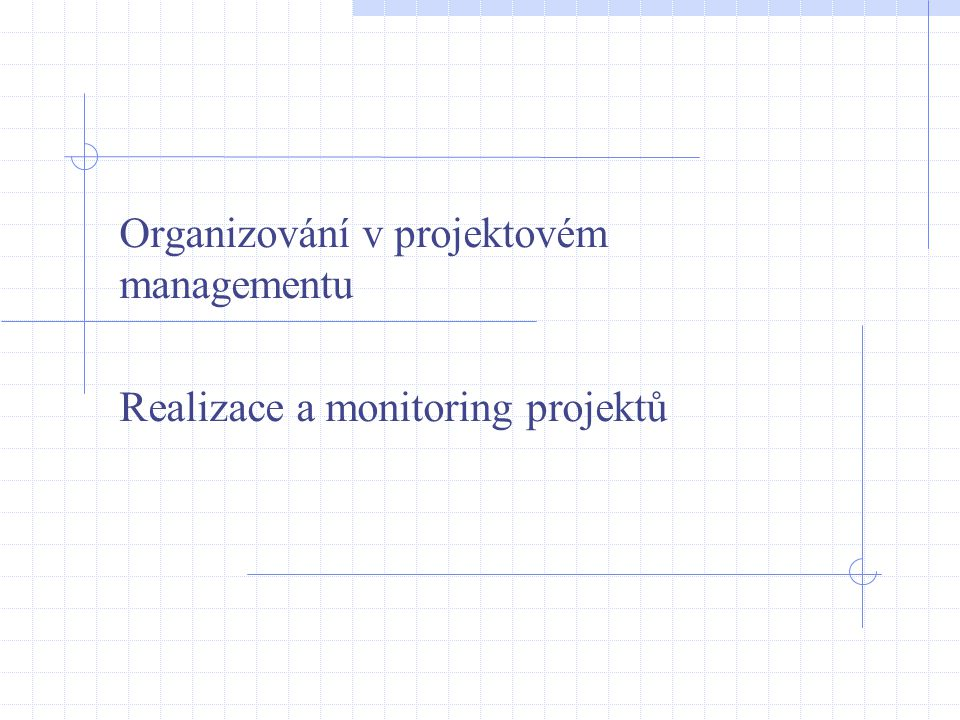 Organizování v projektovém managementu Realizace a monitoring projektů