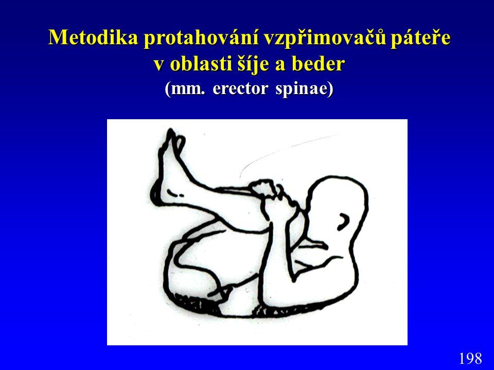 Metodika protahování vzpřimovačů páteře v oblasti šíje a beder