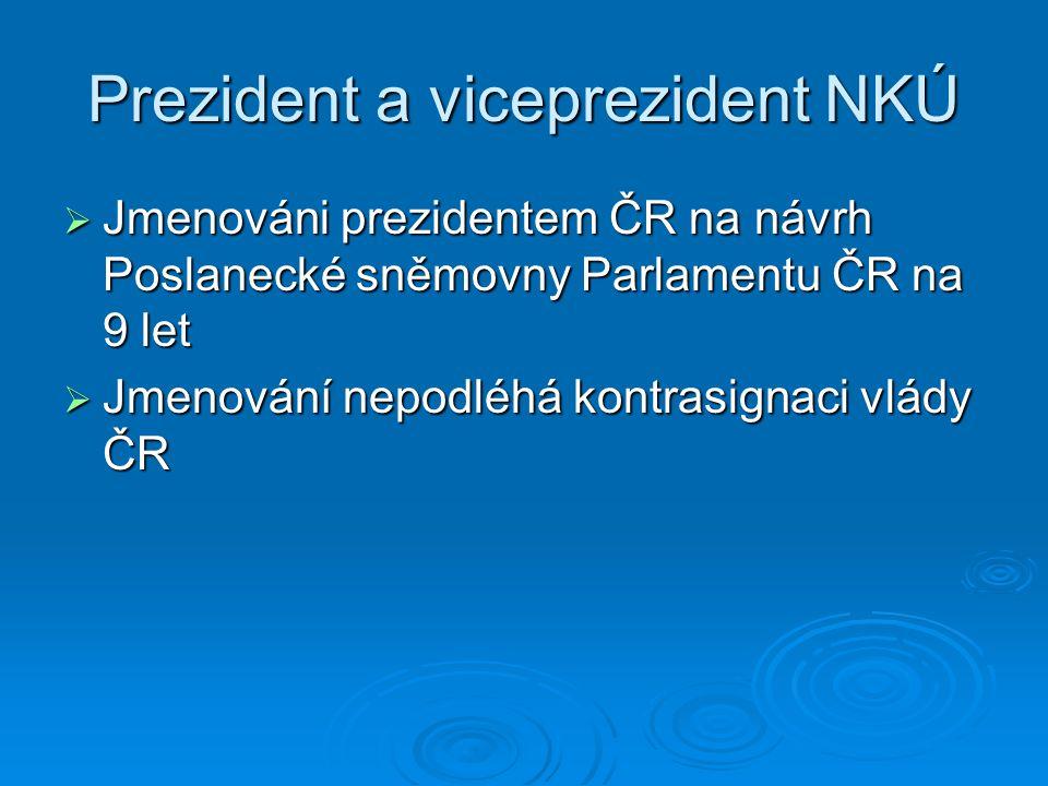 Prezident a viceprezident NKÚ