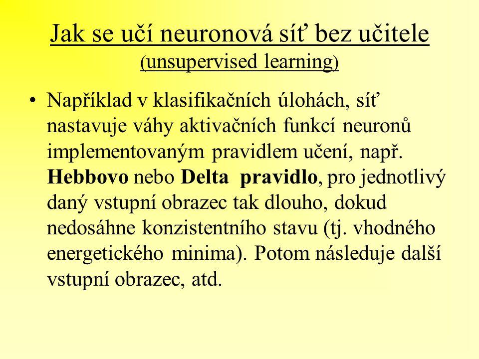 Jak se učí neuronová síť bez učitele (unsupervised learning)