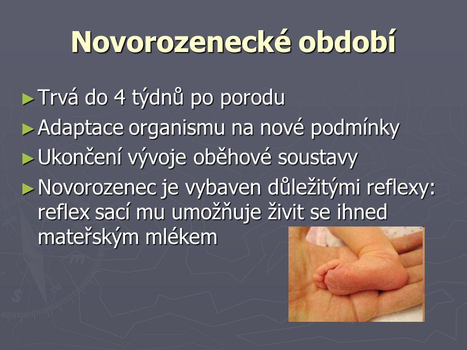 Novorozenecké období Trvá do 4 týdnů po porodu