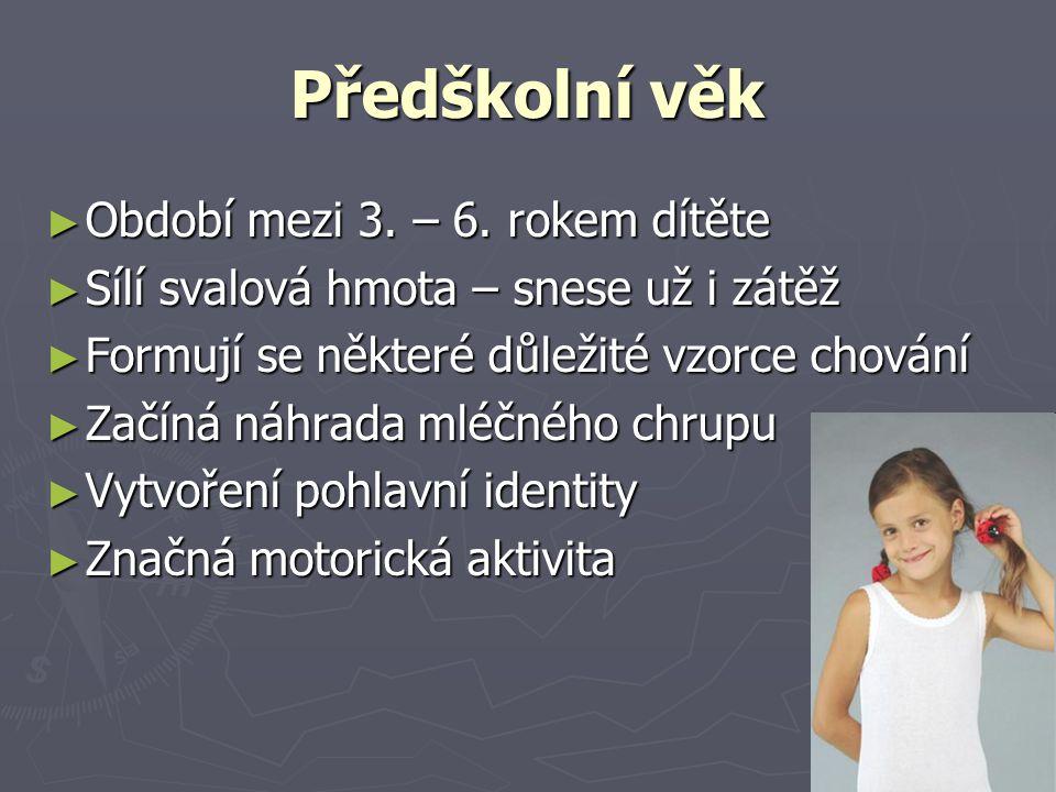 Předškolní věk Období mezi 3. – 6. rokem dítěte