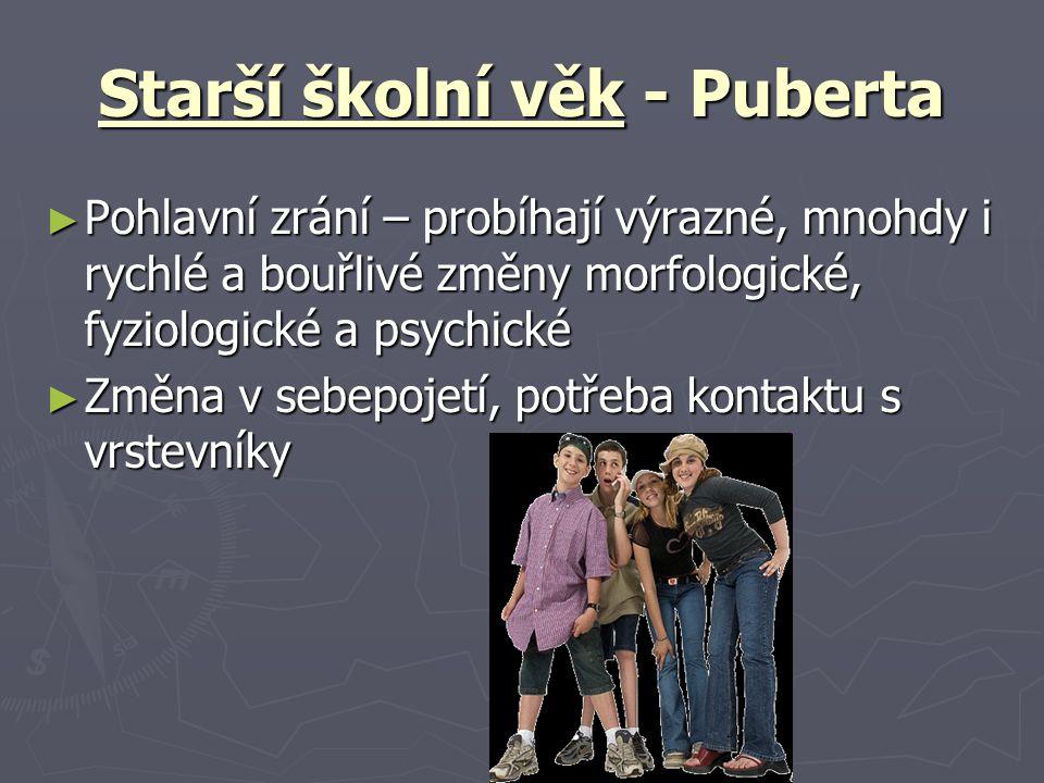 Starší školní věk - Puberta