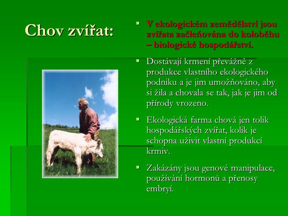 Chov zvířat: V ekologickém zemědělství jsou zvířata začleňována do koloběhu – biologické hospodářství.