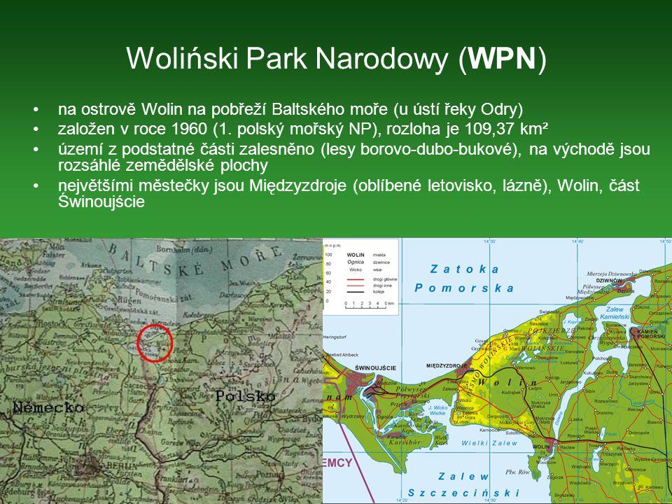 Woliński Park Narodowy (WPN)