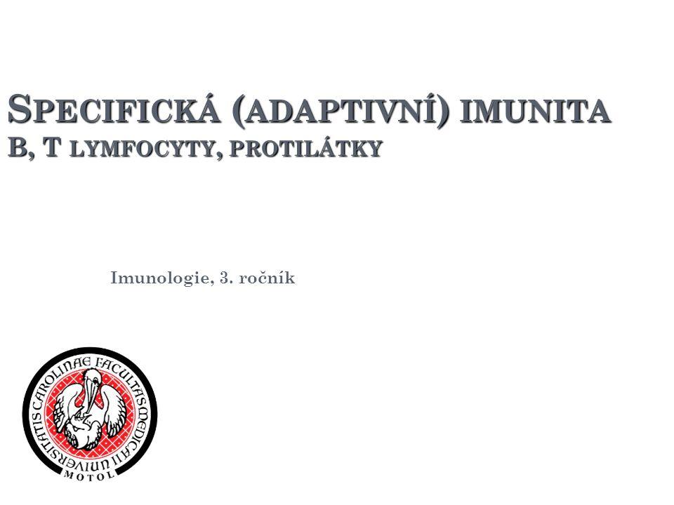 Specifická (adaptivní) imunita B, T lymfocyty, protilátky