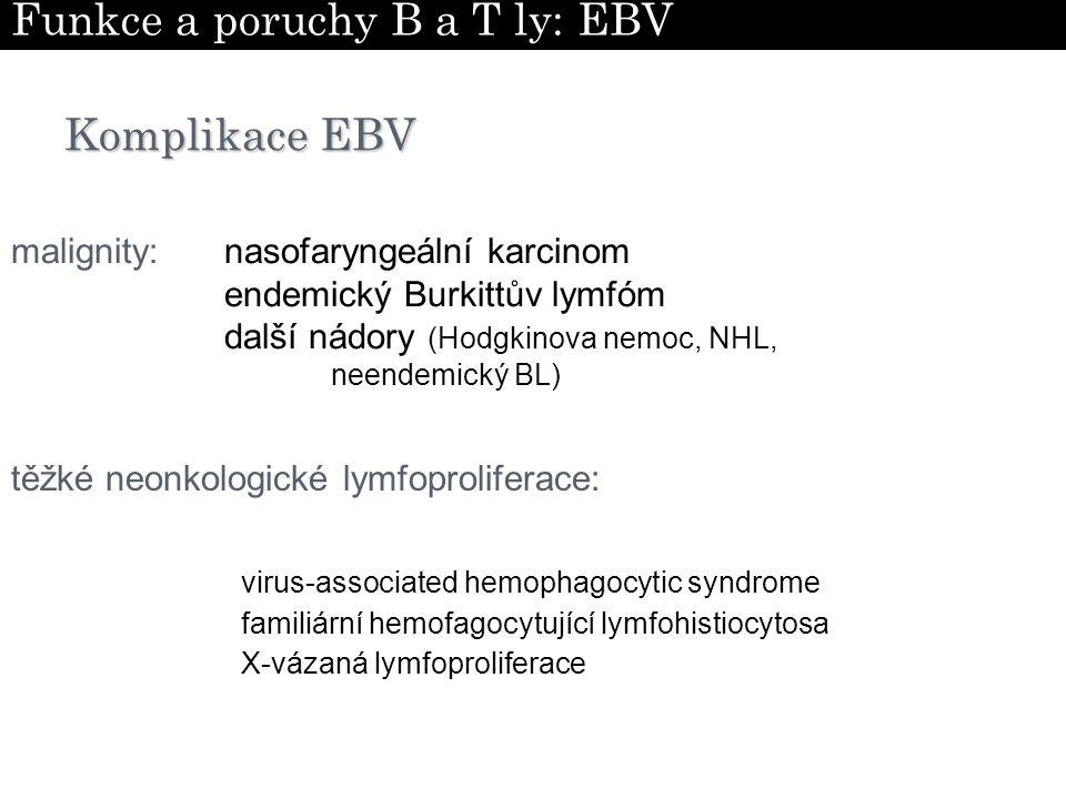 Funkce a poruchy B a T ly: EBV