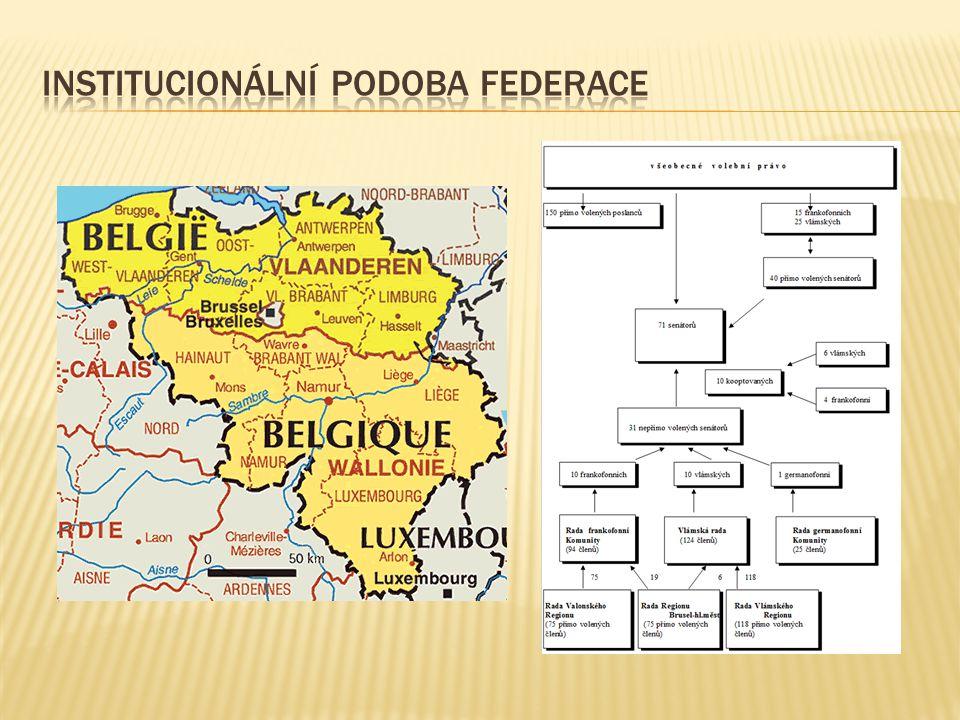 Institucionální podoba federace