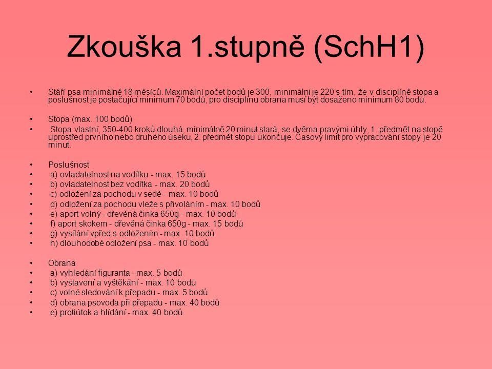 Zkouška 1.stupně (SchH1)