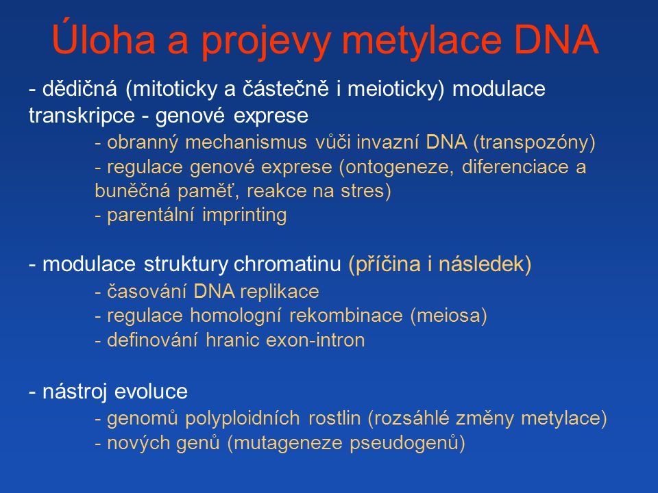 Úloha a projevy metylace DNA