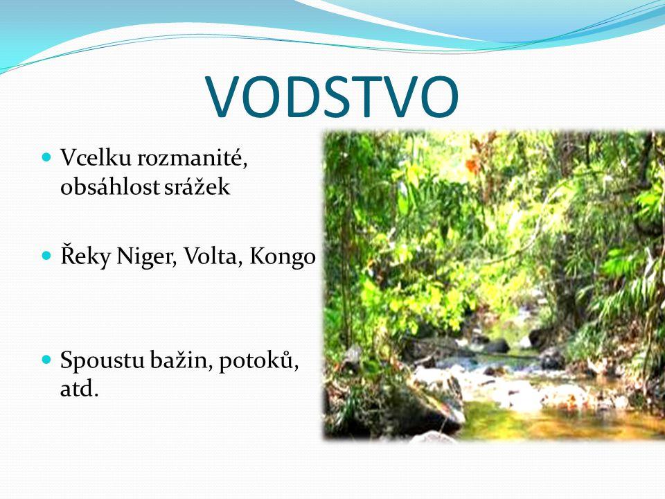 VODSTVO Vcelku rozmanité, obsáhlost srážek Řeky Niger, Volta, Kongo
