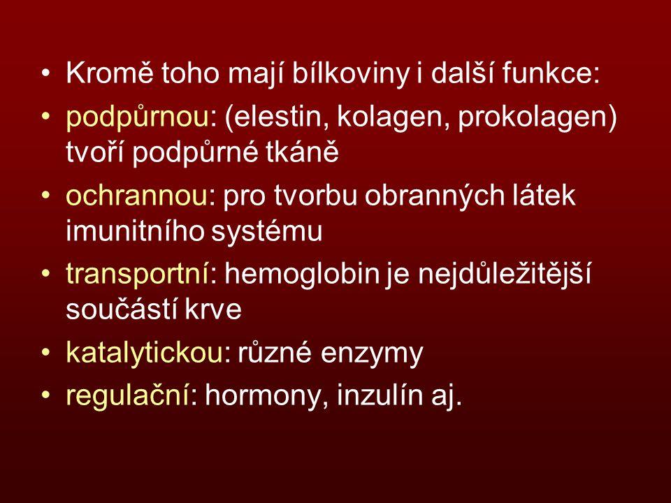 Kromě toho mají bílkoviny i další funkce: