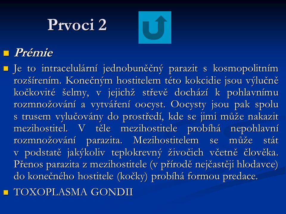 Prvoci 2 Prémie.