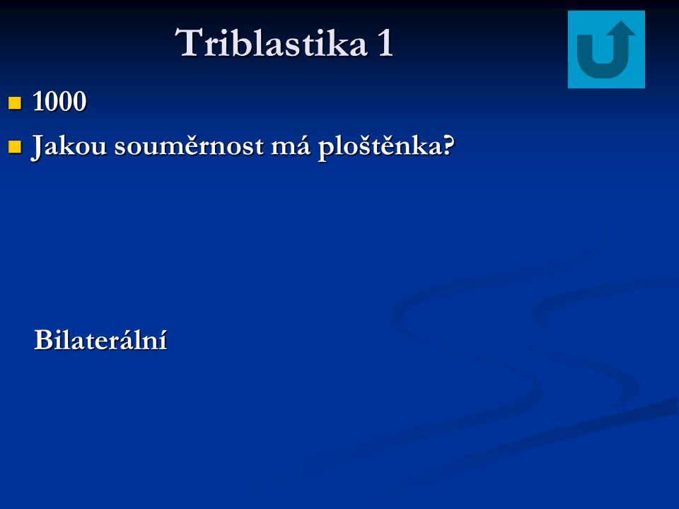 Triblastika 1 1000 Jakou souměrnost má ploštěnka Bilaterální