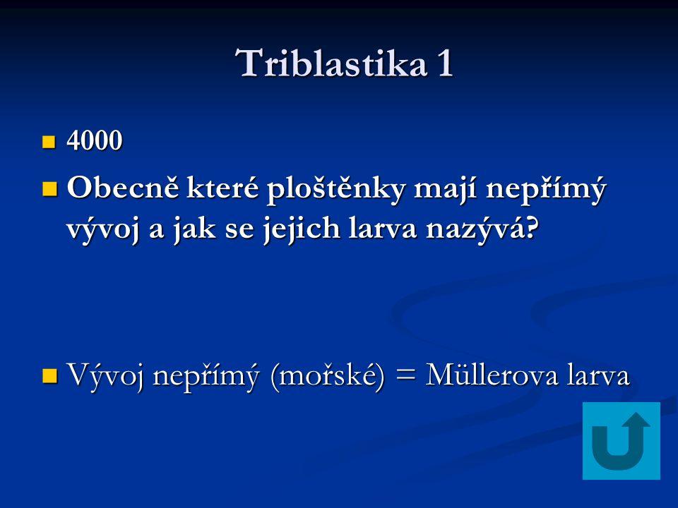 Triblastika 1 4000. Obecně které ploštěnky mají nepřímý vývoj a jak se jejich larva nazývá Vývoj nepřímý (mořské) = Müllerova larva.