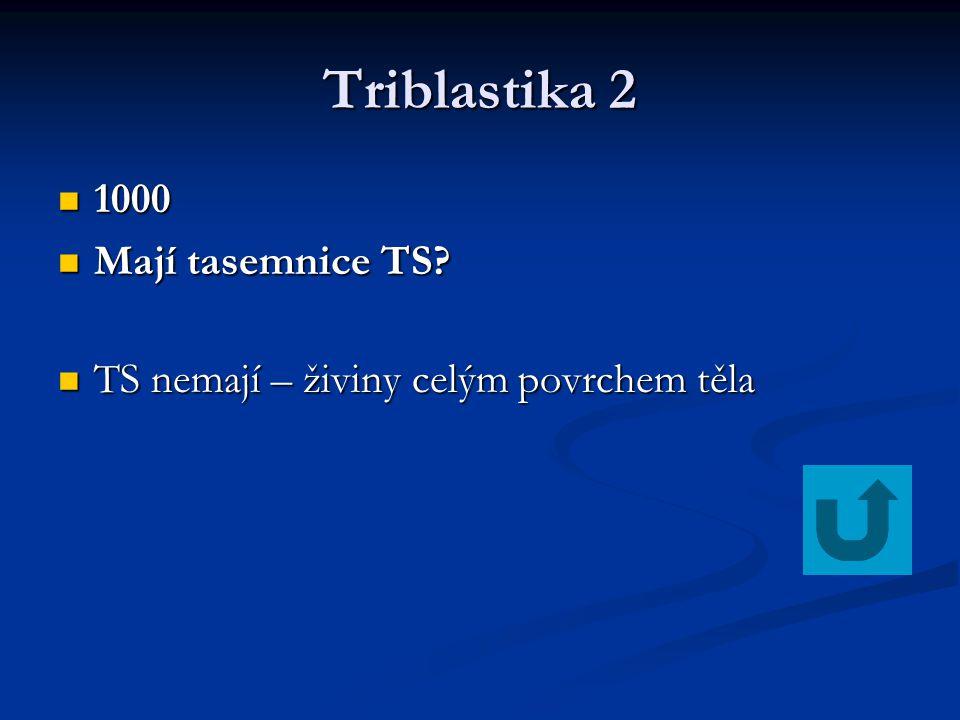 Triblastika 2 1000 Mají tasemnice TS