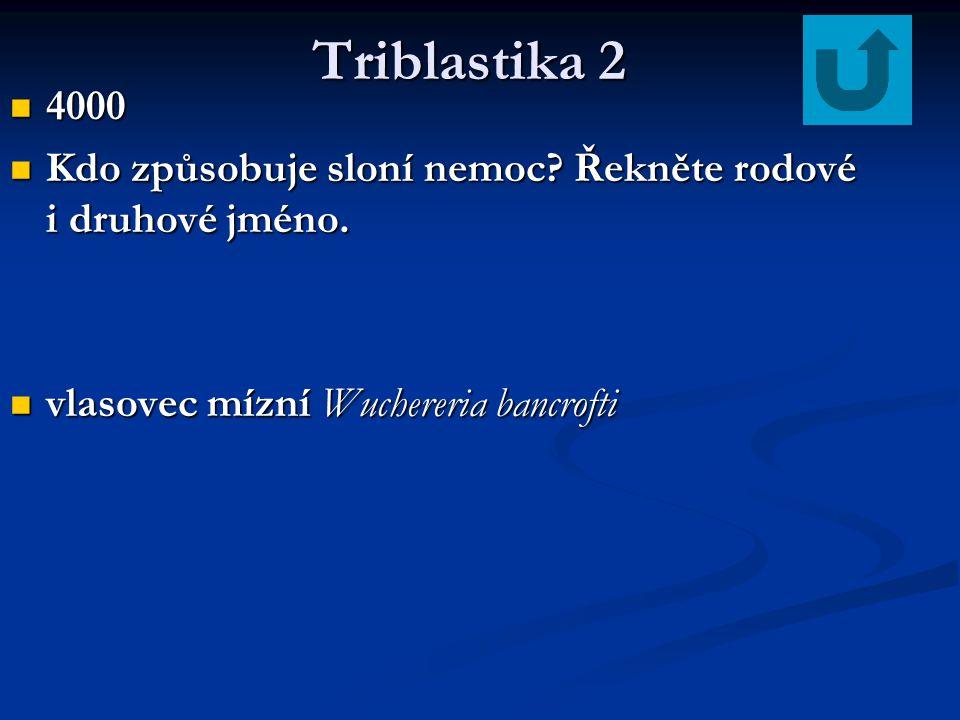 Triblastika 2 4000. Kdo způsobuje sloní nemoc. Řekněte rodové i druhové jméno.