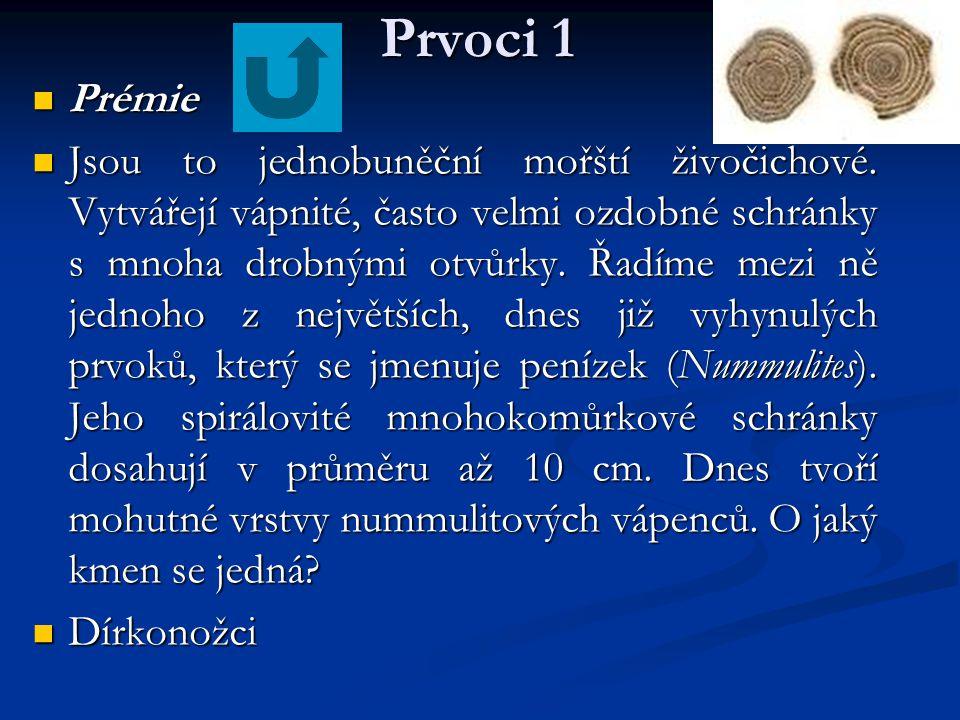 Prvoci 1 Prémie.