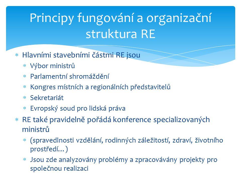 Principy fungování a organizační struktura RE
