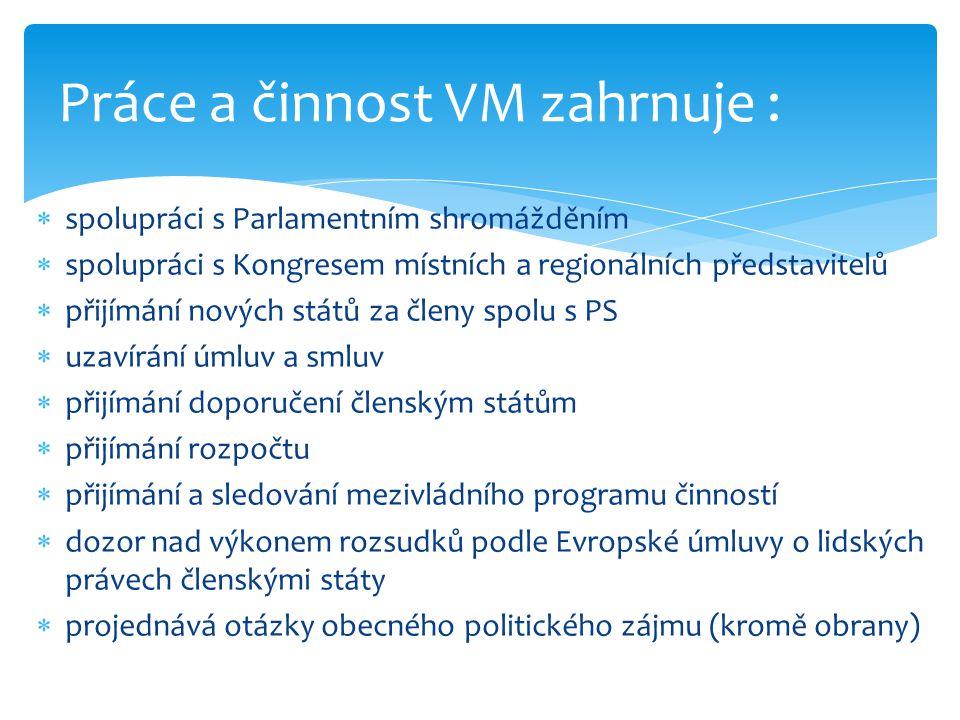 Práce a činnost VM zahrnuje :