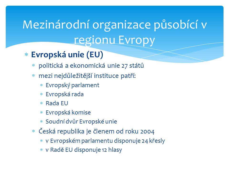 Mezinárodní organizace působící v regionu Evropy