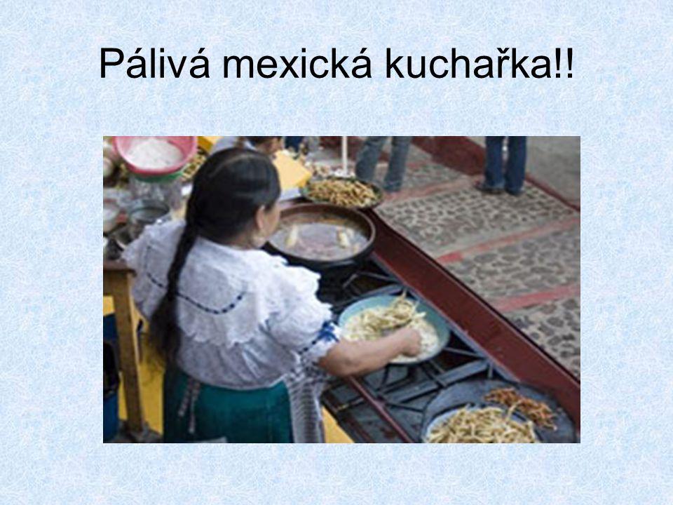 Pálivá mexická kuchařka!!