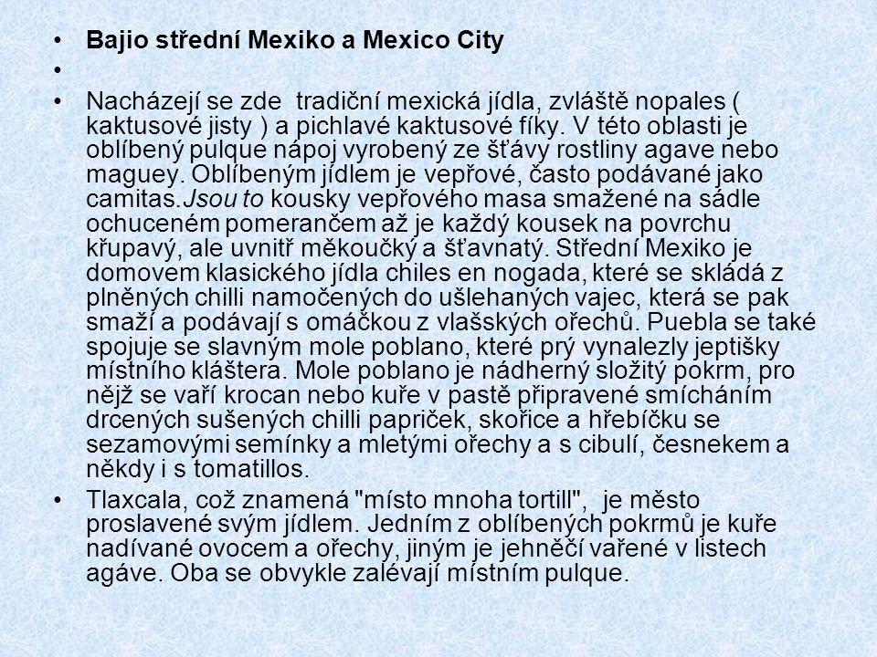 Bajio střední Mexiko a Mexico City