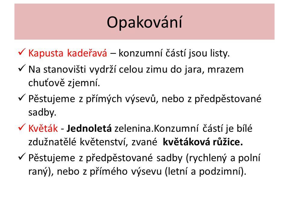 Opakování Kapusta kadeřavá – konzumní částí jsou listy.