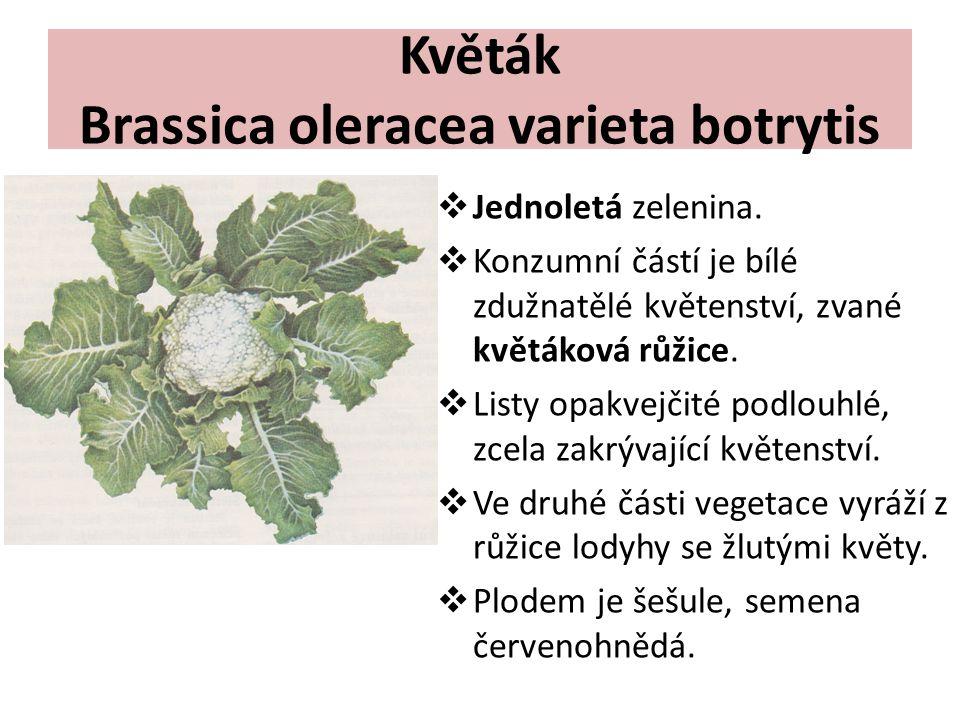 Květák Brassica oleracea varieta botrytis