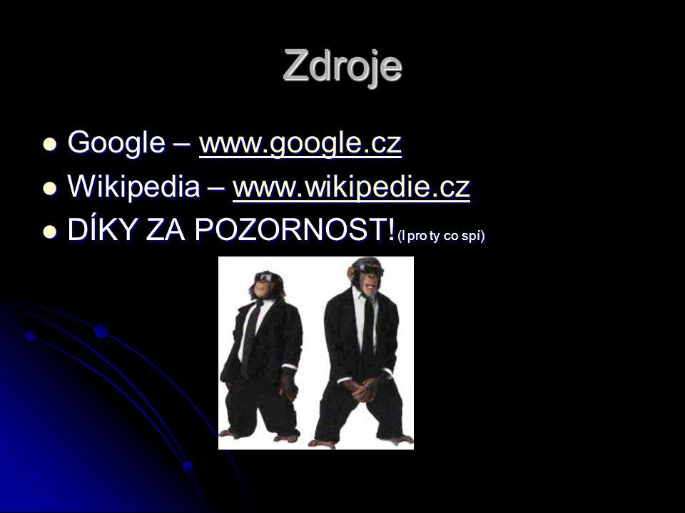 Zdroje Google – www.google.cz Wikipedia – www.wikipedie.cz