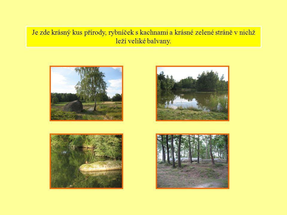 Je zde krásný kus přírody, rybníček s kachnami a krásné zelené stráně v nichž leží veliké balvany.