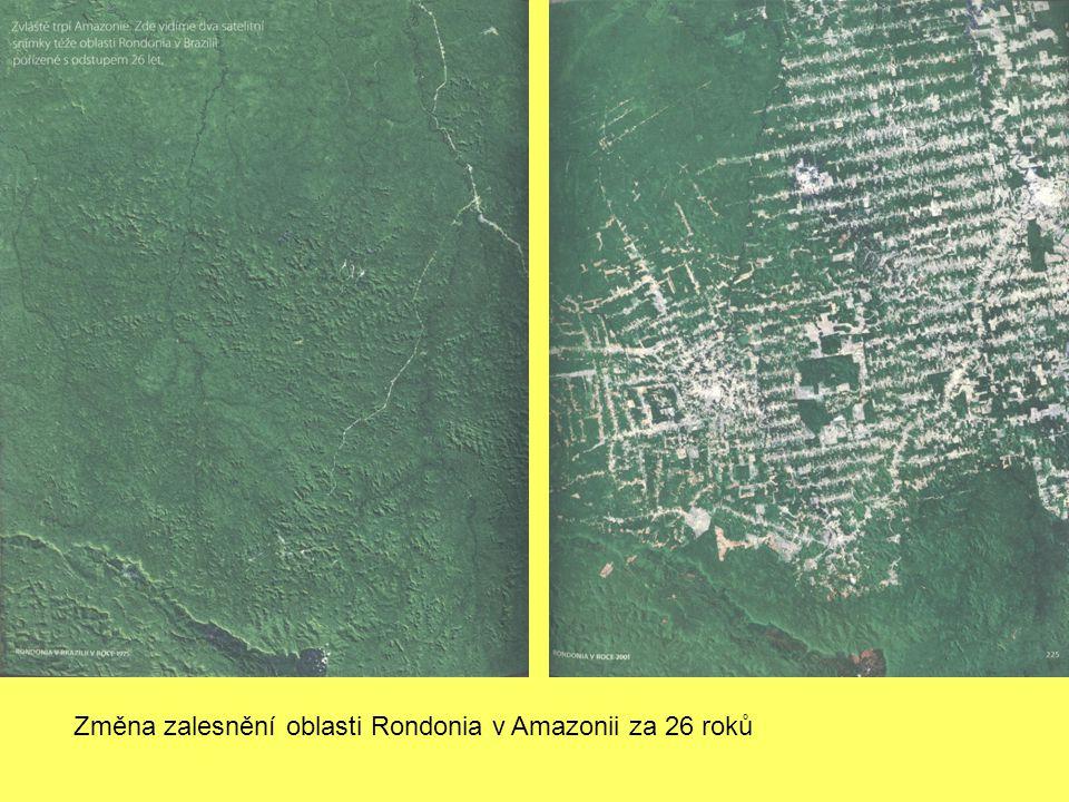 Změna zalesnění oblasti Rondonia v Amazonii za 26 roků
