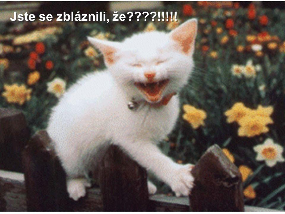 Jste se zbláznili, že !!!!!