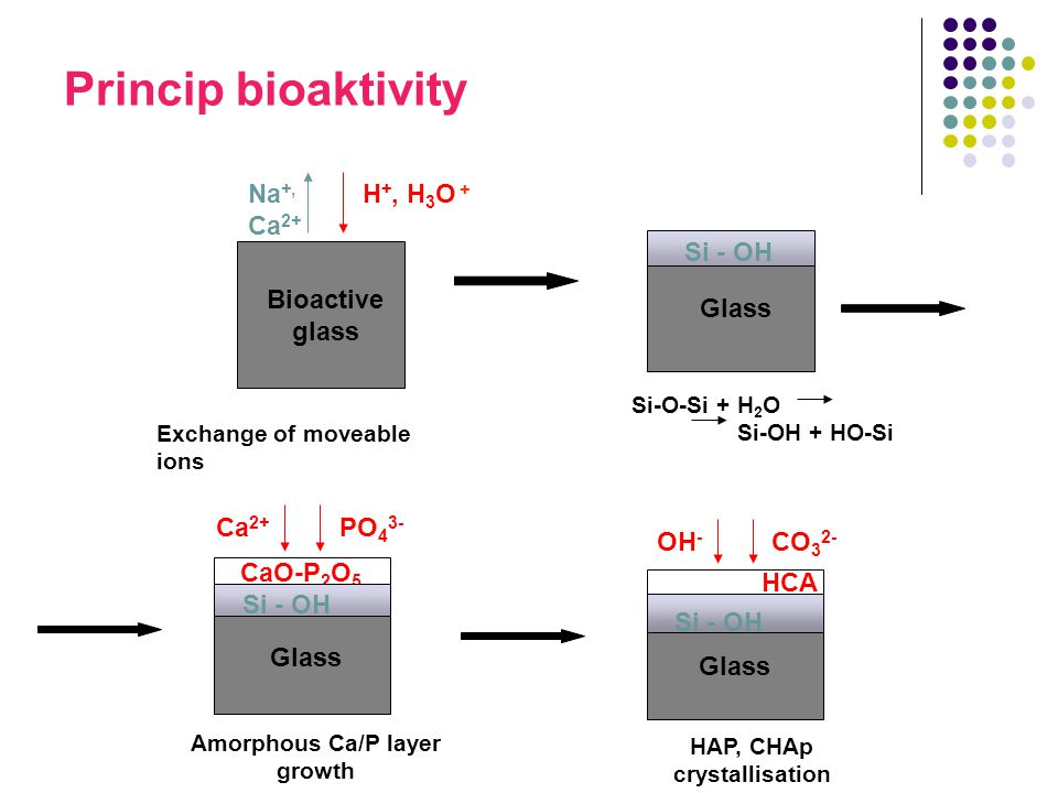 Amorphous Ca/P layer growth HAP, CHAp crystallisation