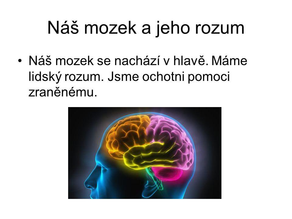 Náš mozek a jeho rozum Náš mozek se nachází v hlavě.