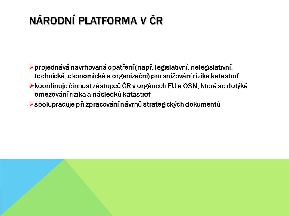 Národní platforma v ČR