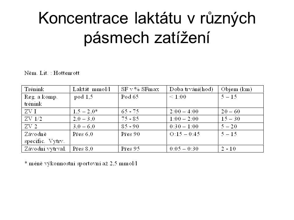 Koncentrace laktátu v různých pásmech zatížení