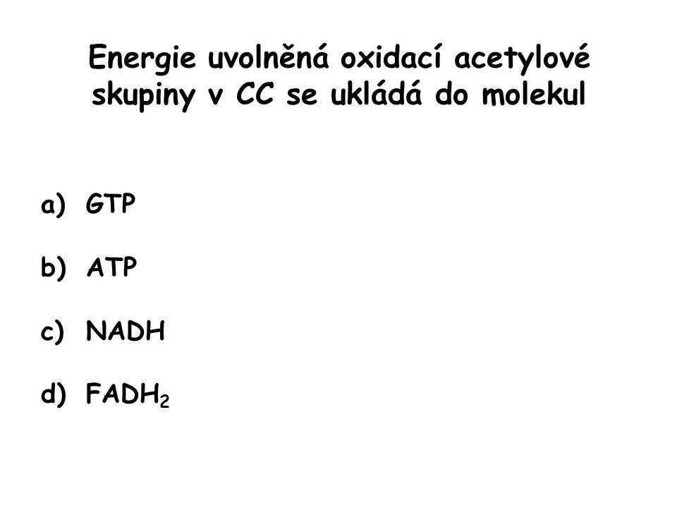 Energie uvolněná oxidací acetylové skupiny v CC se ukládá do molekul