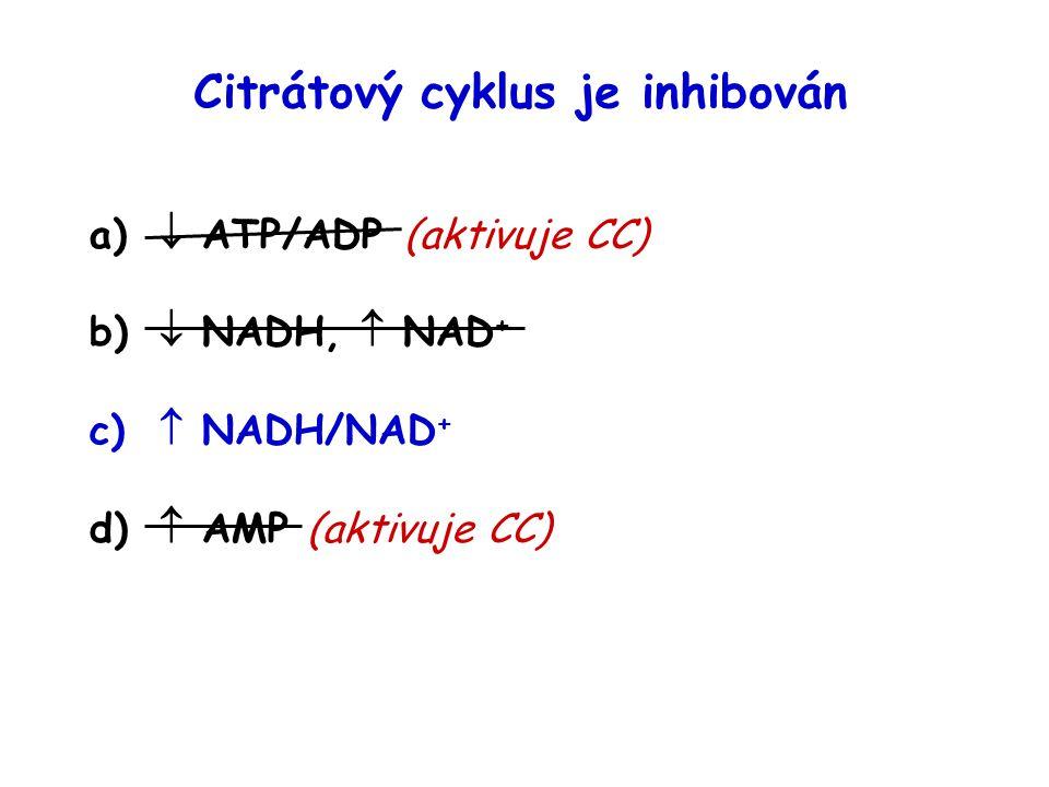 Citrátový cyklus je inhibován