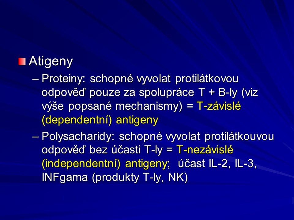 Atigeny Proteiny: schopné vyvolat protilátkovou odpověď pouze za spolupráce T + B-ly (viz výše popsané mechanismy) = T-závislé (dependentní) antigeny.