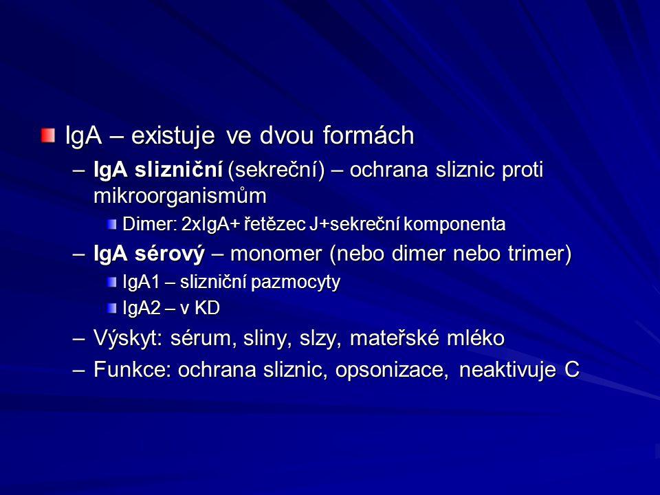 IgA – existuje ve dvou formách