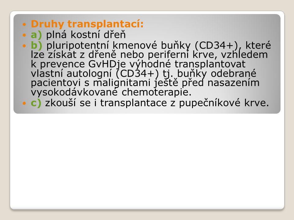 Druhy transplantací: a) plná kostní dřeň.
