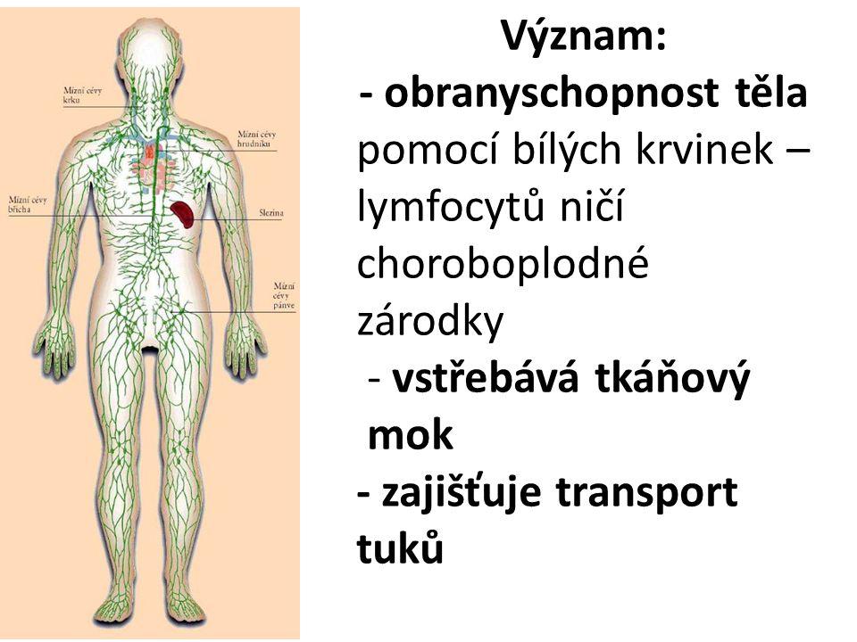 - obranyschopnost těla