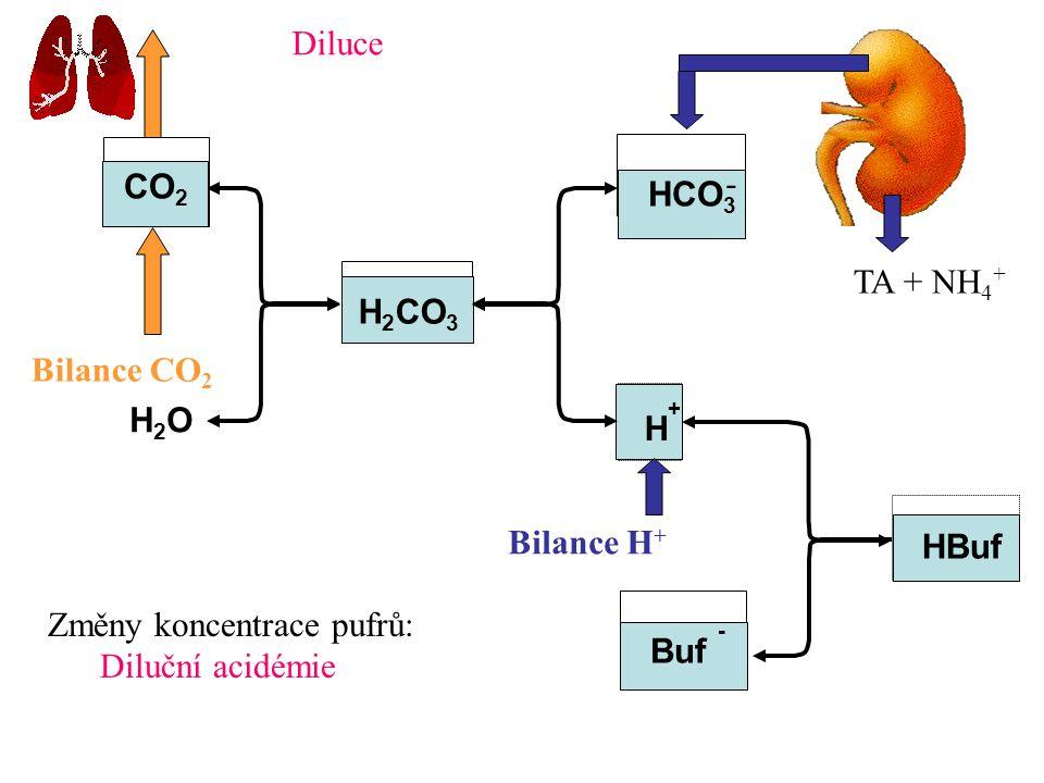 Diluce CO2. - HCO3. TA + NH4+ H2CO3. Bilance CO2. H2O. H+ Bilance H+ HBuf. Změny koncentrace pufrů: