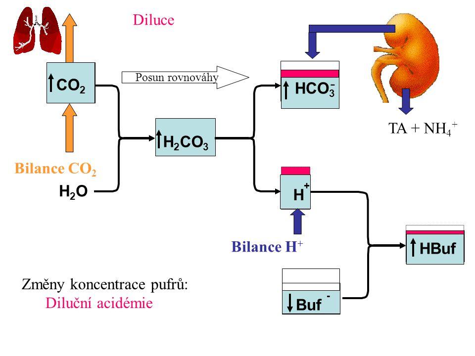 CO2 HCO3 H2CO3 H2O H+ HBuf Buf -